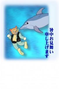 ねこのダイビングとイルカ(暑中見舞い)
