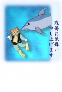 ねこのダイビングとイルカ(残暑見舞い)