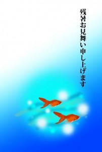 金魚 残暑見舞い