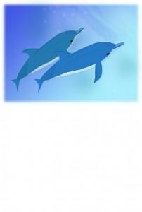 イルカ 残暑見舞い