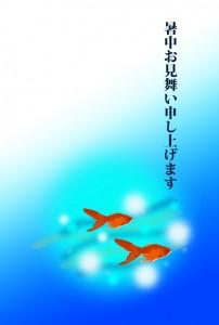 金魚 暑中見舞い